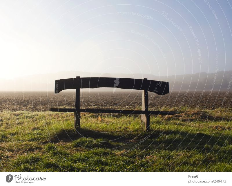 autumn morning Landscape Sunlight Fog Meadow Field Outskirts Deserted Bench Wood tranquillity Relaxation Exterior shot Morning