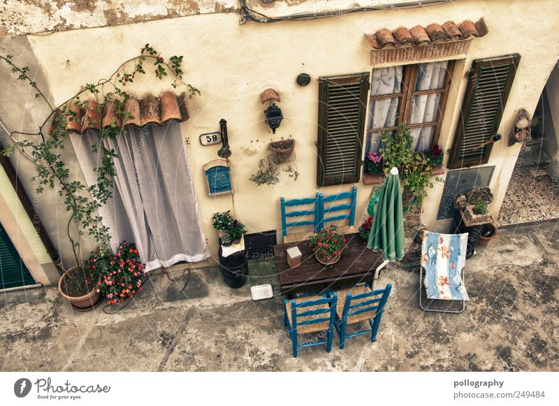 Blue Plant House (Residential Structure) Window Wall (building) Wall (barrier) Door Flat (apartment) Facade Table Living or residing Decoration Chair Italy Village Furniture