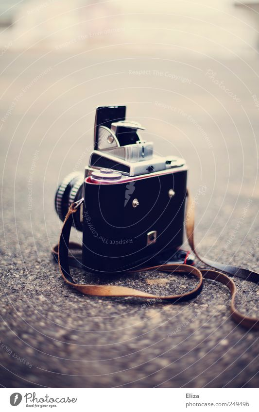 camera Camera Old Analog Ground Vintage Objective Subdued colour Exterior shot Deserted Copy Space top Shallow depth of field