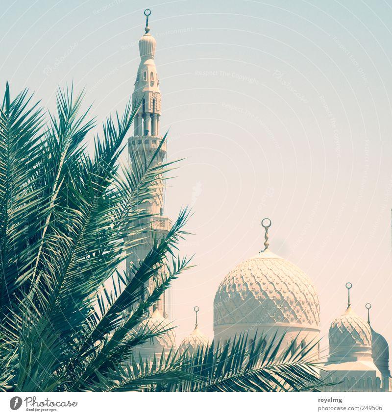 In hiding Tourism Trip Far-off places City trip Summer Summer vacation Cloudless sky Dubai United Arab Emirates Mosque Tourist Attraction Landmark Monument