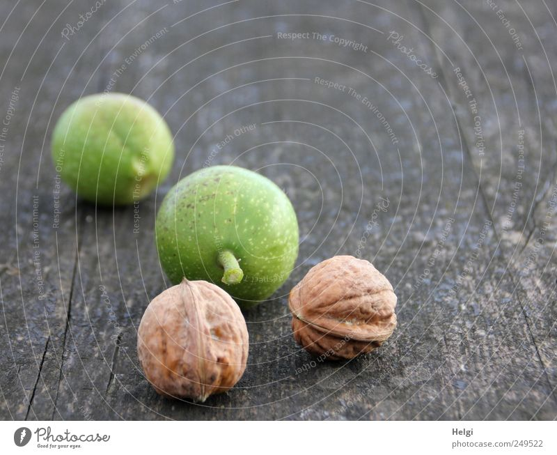 new crop... Food Fruit Nut Walnut Edible nut Nutrition Organic produce Vegetarian diet Tabletop Wood Lie Growth Esthetic Authentic Simple Fresh Healthy