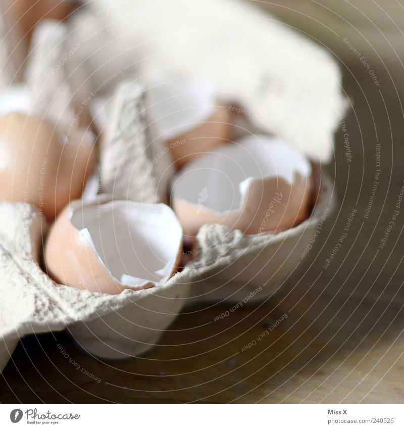 If I'd expected you today, I'd have made cowpokes. Food Nutrition Organic produce Broken Egg Hen's egg Cooking Eggshell Eggs cardboard Fragile Colour photo