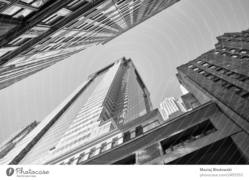 Looking up at New York buildings, Manhattan. Office Town Downtown Skyline High-rise Bank building Building Architecture Business Decadence Success