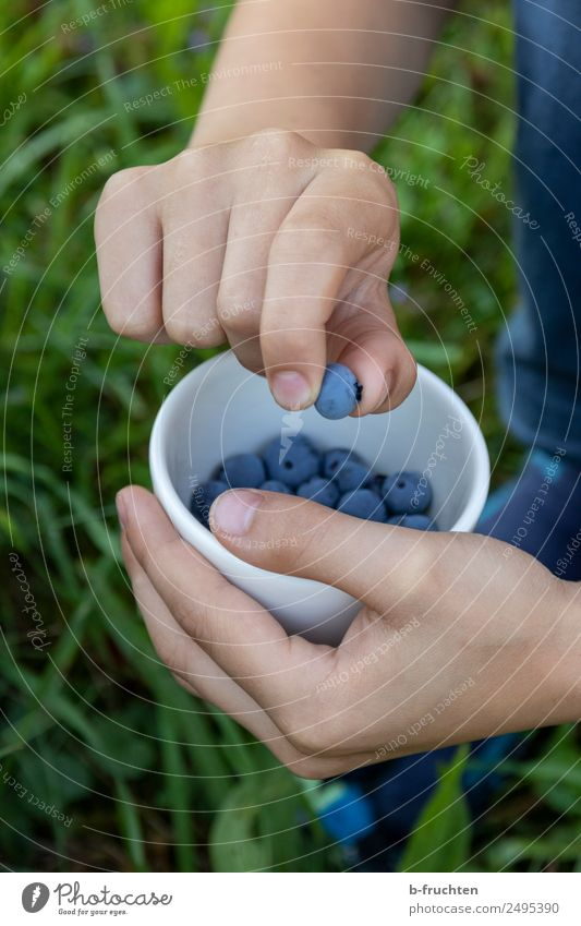 Child shows blueberry Food Fruit Organic produce Bowl Hand 8 - 13 years Infancy Summer Garden Meadow Select Eating To hold on To enjoy Stand Healthy Blueberry