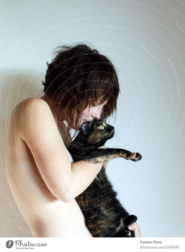 right handling of fur: Feminine Young woman Youth (Young adults) Woman Adults Body 1 Human being Brunette Short-haired Animal Pet Cat Touch To hold on To enjoy