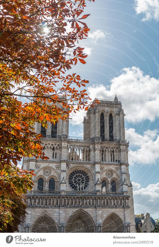 Notre Dame Cathedral on autumn Style Beautiful Vacation & Travel Tourism Sun Culture Landscape Sky Autumn Church Architecture Facade Monument Stone Old Historic