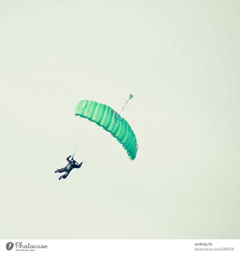 Skydiver. 1 Human being Cloudless sky Aviation Airfield Parachute Flying Green Bravery Sports Skydiving To fall Easy Hover Sportsperson Dangerous Fear of flying