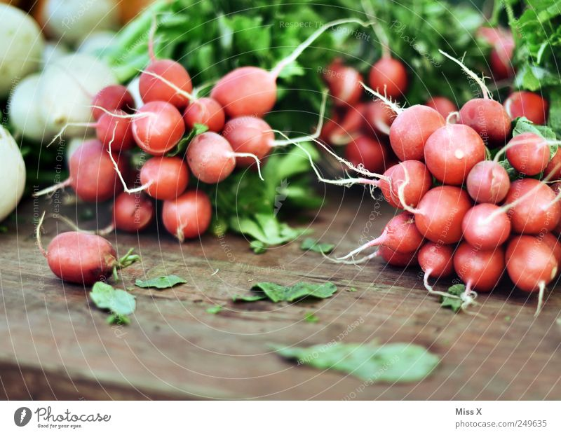 Sharp Food Vegetable Nutrition Small Delicious Round Radish Sell Harvest Farmer's market Vegetable market Stalls and stands Fruit- or Vegetable stall