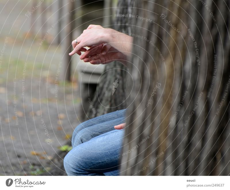 finger theatre Human being Hand Fingers 2 Tree Park Jeans Ring Sympathy Together Friendship Inspiration Attachment Colour photo Subdued colour Exterior shot