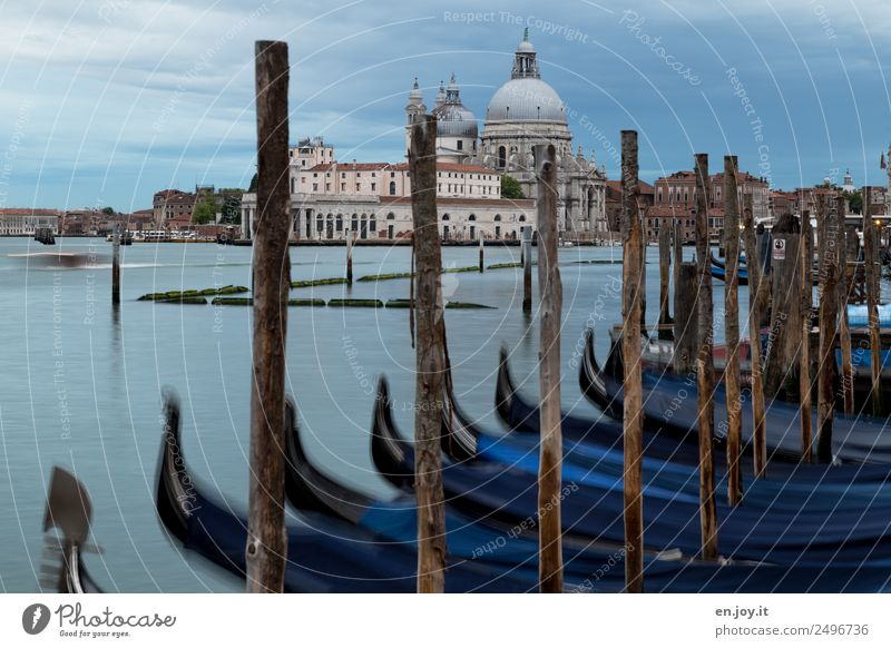 park Vacation & Travel Sightseeing City trip Summer vacation Clouds Storm clouds Ocean Bay Venice Italy Europe Town Old town Church Manmade structures Building