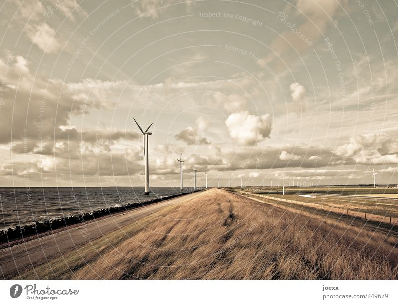 fresh breeze Advancement Future Energy industry Renewable energy Wind energy plant Environment Landscape Sky Clouds Horizon Summer Beautiful weather Coast