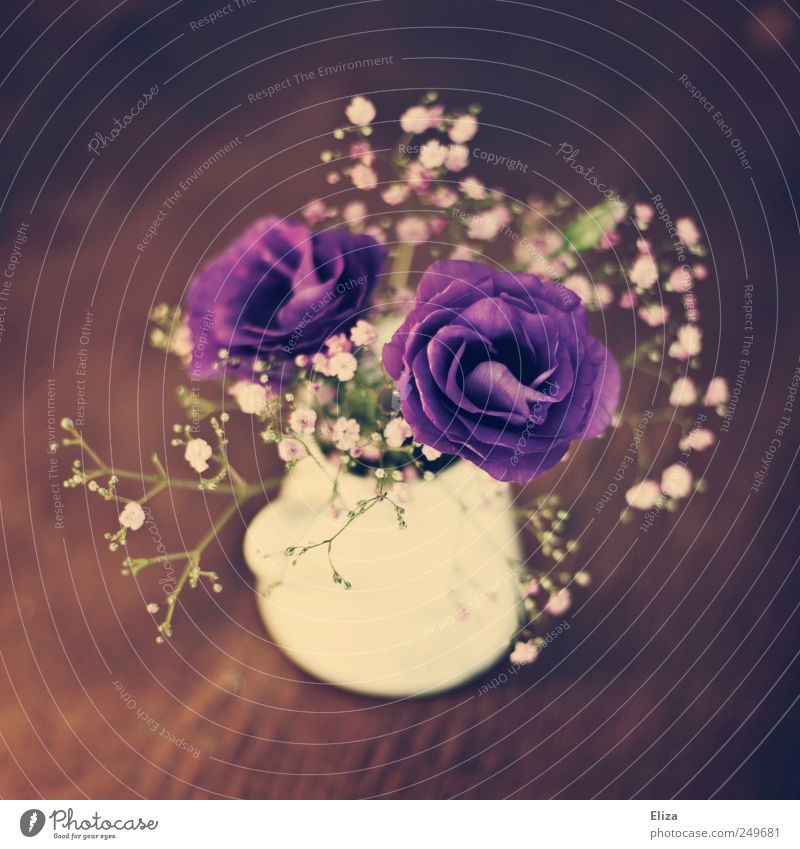Beautiful Flower Wood Blossom Moody Table Decoration Kitsch Vase Cut Embellish Scissors Vintage Floristry Baby's-breath