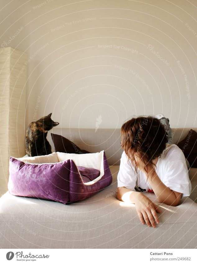 looking away Feminine Young woman Youth (Young adults) Woman Adults 1 Human being Animal Pet Cat Rotate Lie Make Together Beautiful Uniqueness Cute Thin Sofa