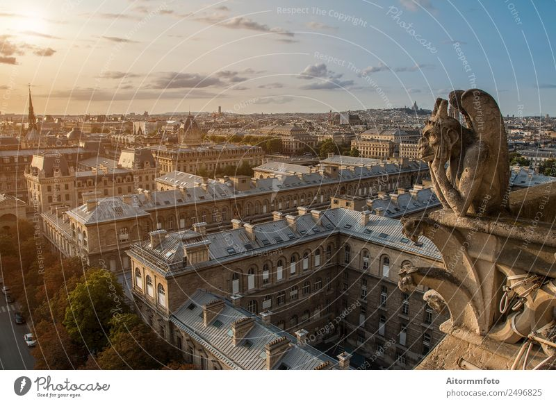 Gargoyle on Notre Dame In Paris Style Vacation & Travel Tourism Sightseeing Summer House (Residential Structure) Landscape Sky Town Architecture Street Stone