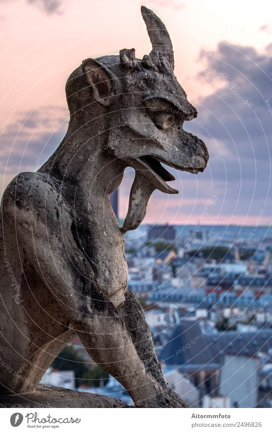 Gargoyle on Notre Dame In Paris at sunset Style Tourism Sightseeing Decoration Art Culture Sky Skyline Architecture Balcony Stone Old Historic Horror