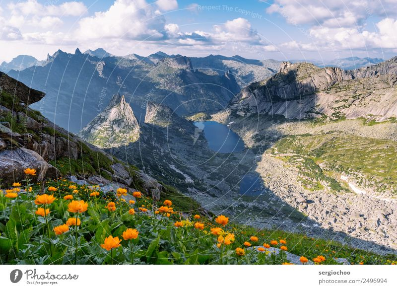 globe flowers Climbing Mountaineering Hiking Landscape Clouds Spring Summer Beautiful weather Flower Park Meadow Hill Rock Alps Peak Pond Lake Observe