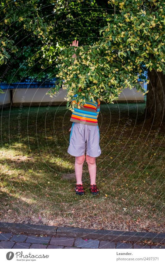 Child Human being Nature Happy Boy (child) Playing Leisure and hobbies Masculine Infancy To hold on 8 - 13 years Toddler Protest 3 - 8 years Prismatic colors