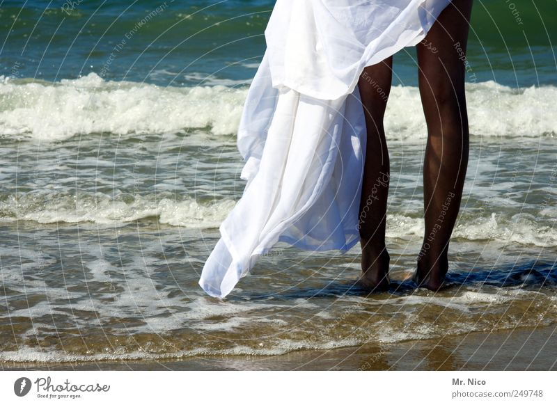 Nature Youth (Young adults) White Summer Vacation & Travel Beach Ocean Feminine Happy Legs Waves Skin Wind Wait Island Climate