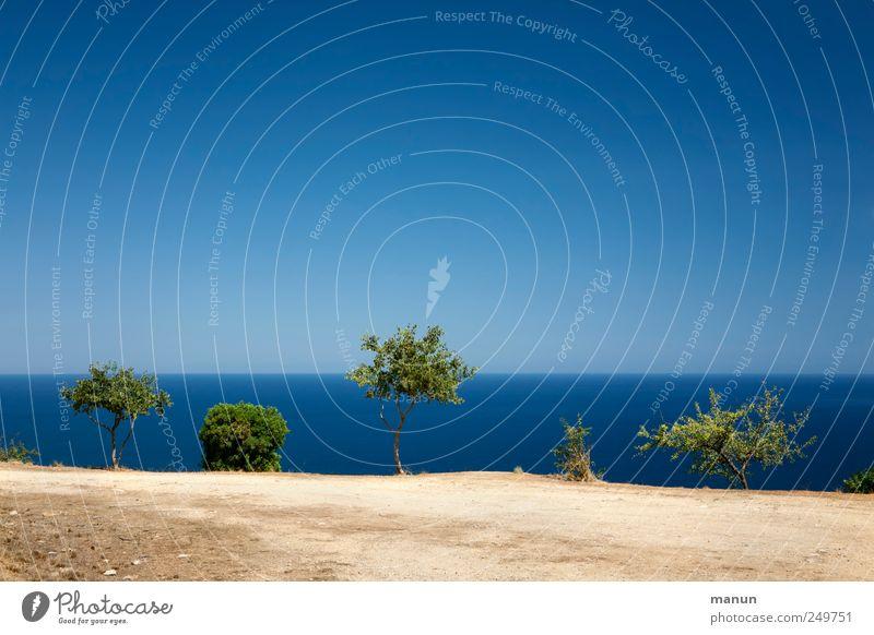 blue ride Vacation & Travel Nature Landscape Earth Sand Water Sky Tree Bushes Coast Ocean Cliff Sardinia Mediterranean sea Authentic Natural Blue Wanderlust
