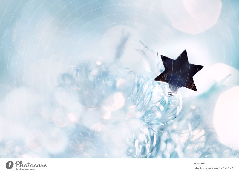 starry mica Style Feasts & Celebrations Festive Christmas star Star (Symbol) Sign Bright Silver Colour photo Interior shot Deserted Copy Space left Contrast