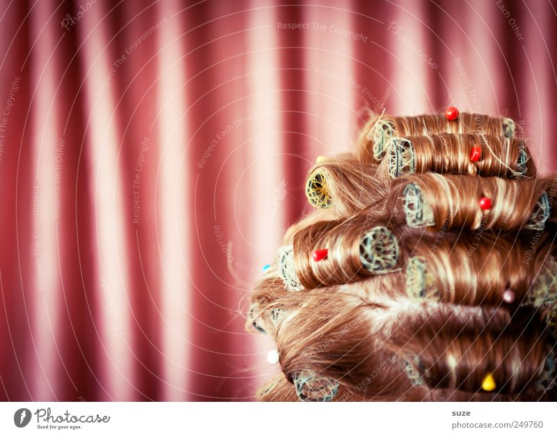 Human being Woman Beautiful Adults Head Hair and hairstyles Funny Pink Hair Stripe Retro Shows Cloth Mask Wrinkles Dry