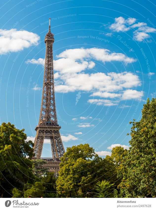 Eiffel Tower in summer on blue sky Vacation & Travel Tourism Sightseeing Summer Garden Culture Nature Landscape Sky Park Building Architecture Monument Metal