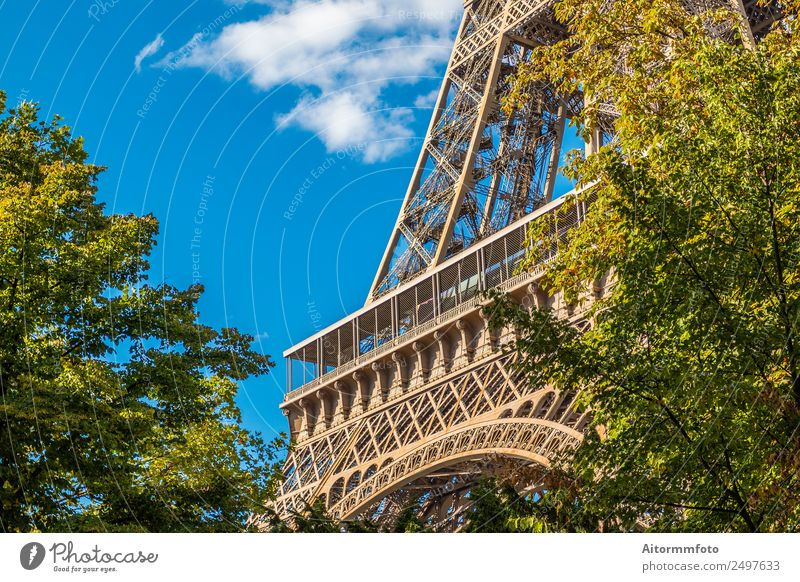 Eiffel Tower in green trees on blue sky Vacation & Travel Tourism Sightseeing Summer Garden Culture Nature Sky Park Building Architecture Monument Metal Bright