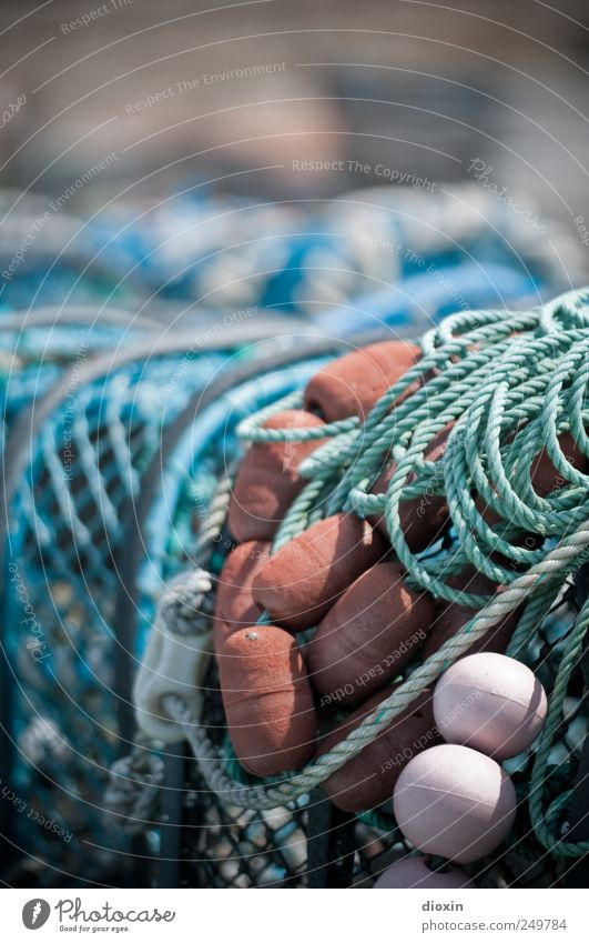 weirs Fisherman Fishery Fishing port Fishing village Authentic Fish trap Rope Fishing float Net Colour photo Exterior shot Detail Deserted Copy Space top