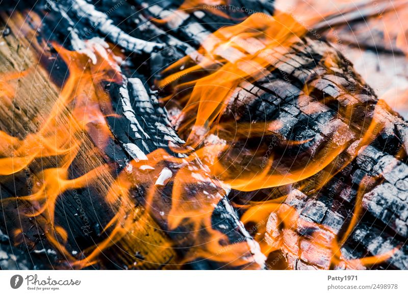 Burning wood Fireplace Adventure Environment Nature Elements Wood Hot Gray Orange Black Threat Environmental pollution Destruction Colour photo Close-up Detail