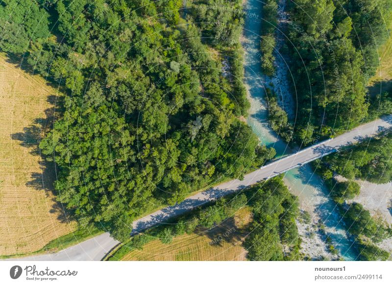 Bridge over the Roanne Nature Landscape Water Summer Tree Flower River bank Deserted Manmade structures Road traffic Street Gray Green Colour photo