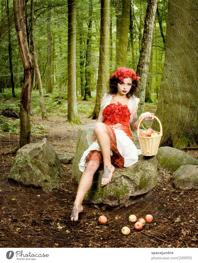 Little Red Riding Hood Human being Feminine Young woman Youth (Young adults) 1 18 - 30 years Adults Environment Nature Landscape Plant Tree Bushes Forest Rock