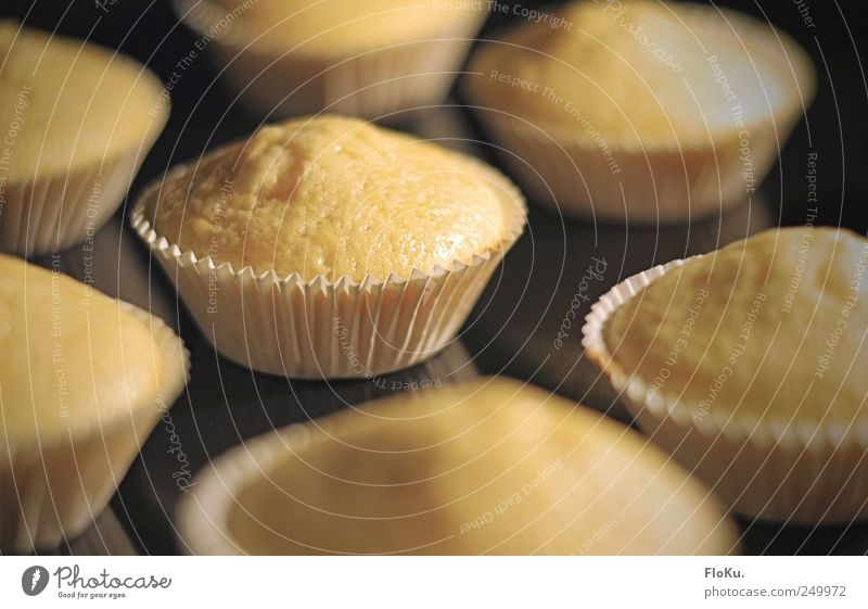 baking of Food Dough Baked goods Cake Dessert Candy Nutrition Kitchen Gastronomy Yellow Black Bakery Muffin Tartlet Baking tray Occur Sweet Delicious