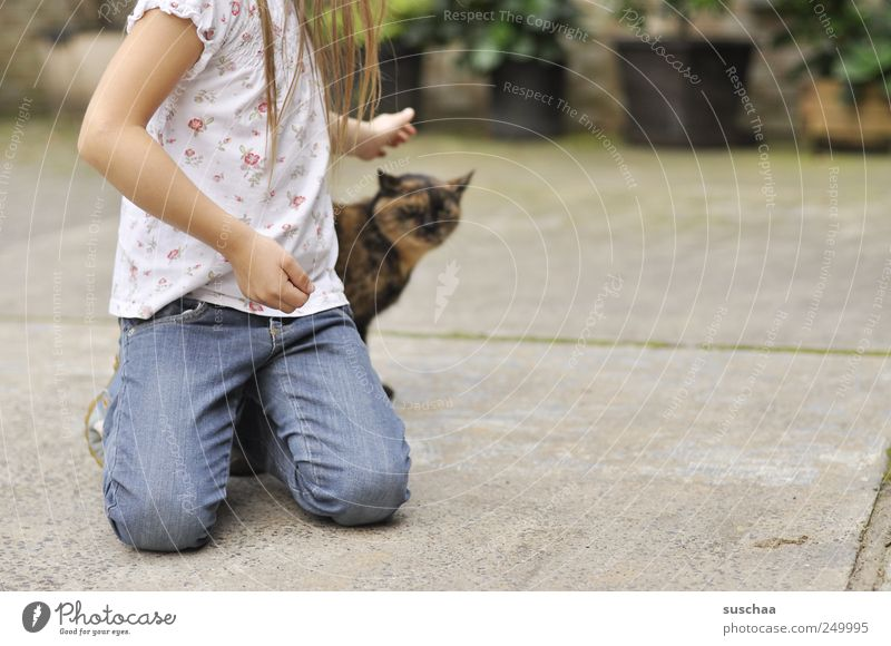 Cat Human being Child Youth (Young adults) Hand Girl Hair and hairstyles Legs Infancy Arm Concrete Touch Pet Love of animals 3 - 8 years