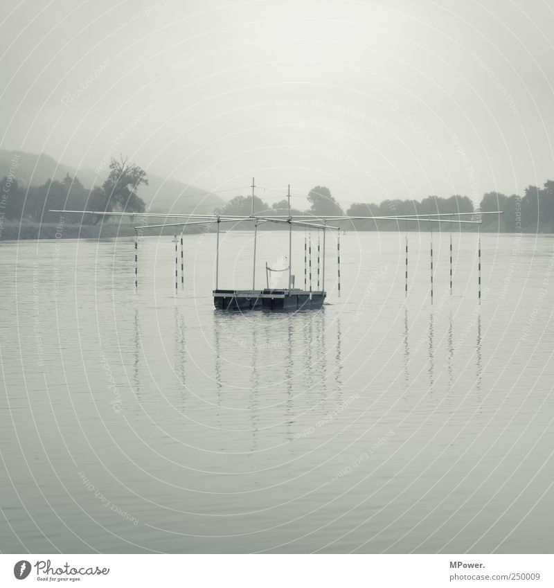 course Sporting Complex Nature Landscape Bad weather Fog River bank Wet Elbe Sports equipment Barrier Water Gray Covered Calm Gloomy Dresden Black & white photo