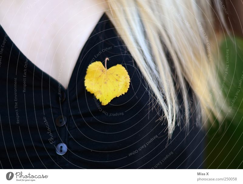 Human being Leaf Adults Yellow Autumn Feminine Blonde Heart 18 - 30 years Chest Jewellery Autumn leaves Long-haired Autumnal Accessory Lime leaf
