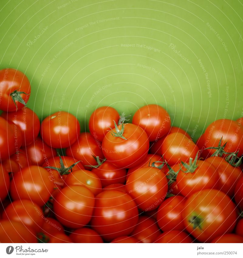 tomatoes Food Vegetable Tomato Nutrition Organic produce Vegetarian diet Healthy Delicious Natural Green Red Colour photo Exterior shot Deserted Copy Space top