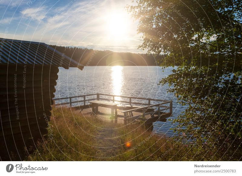 Campsite in Sweden Vacation & Travel Freedom Camping Summer Summer vacation Sun Nature Landscape Water Sunrise Sunset Beautiful weather Meadow Forest Lakeside