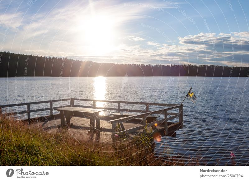 Vacation & Travel Nature Summer Water Landscape Sun Clouds Calm Forest Tourism Freedom Lake Moody Table Idyll Beautiful weather