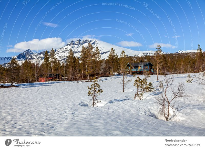 Holiday homes in the mountains Vacation & Travel Tourism Trip Winter Snow Winter vacation Nature Landscape Sky Clouds Spring Climate Beautiful weather Ice Frost