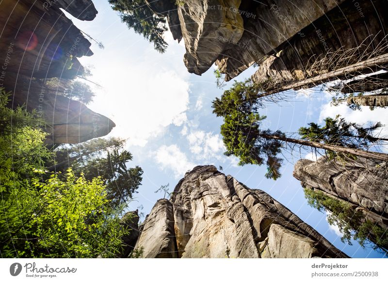 In the Adersbach-Weckelsdorf Rock Town Vacation & Travel Tourism Trip Adventure Far-off places Freedom Mountain Hiking Environment Nature Landscape Plant Animal