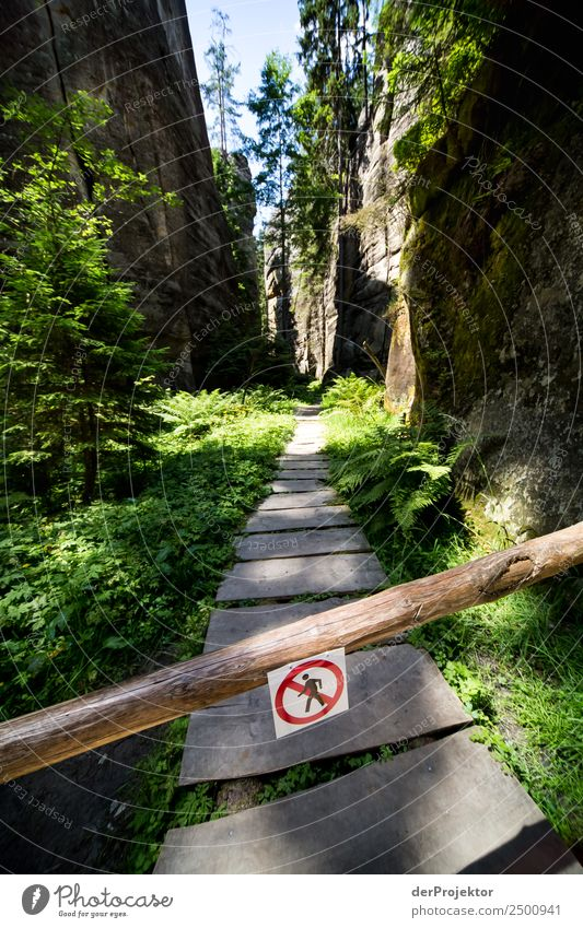 Prohibited ways Vacation & Travel Tourism Trip Adventure Far-off places Expedition Camping Mountain Hiking Environment Nature Landscape Plant Animal Summer
