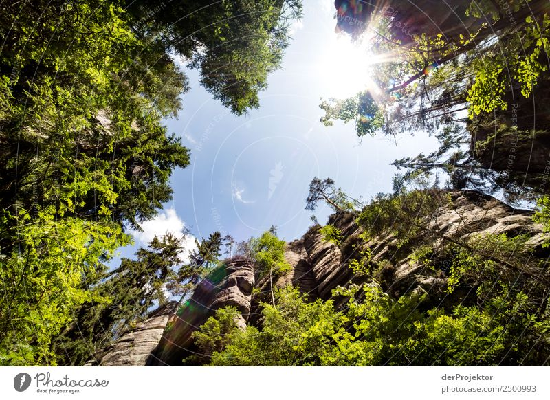 In the Adersbach-Weckelsdorf Rock Town Vacation & Travel Tourism Trip Adventure Far-off places Freedom Summer Summer vacation Mountain Hiking Environment Nature