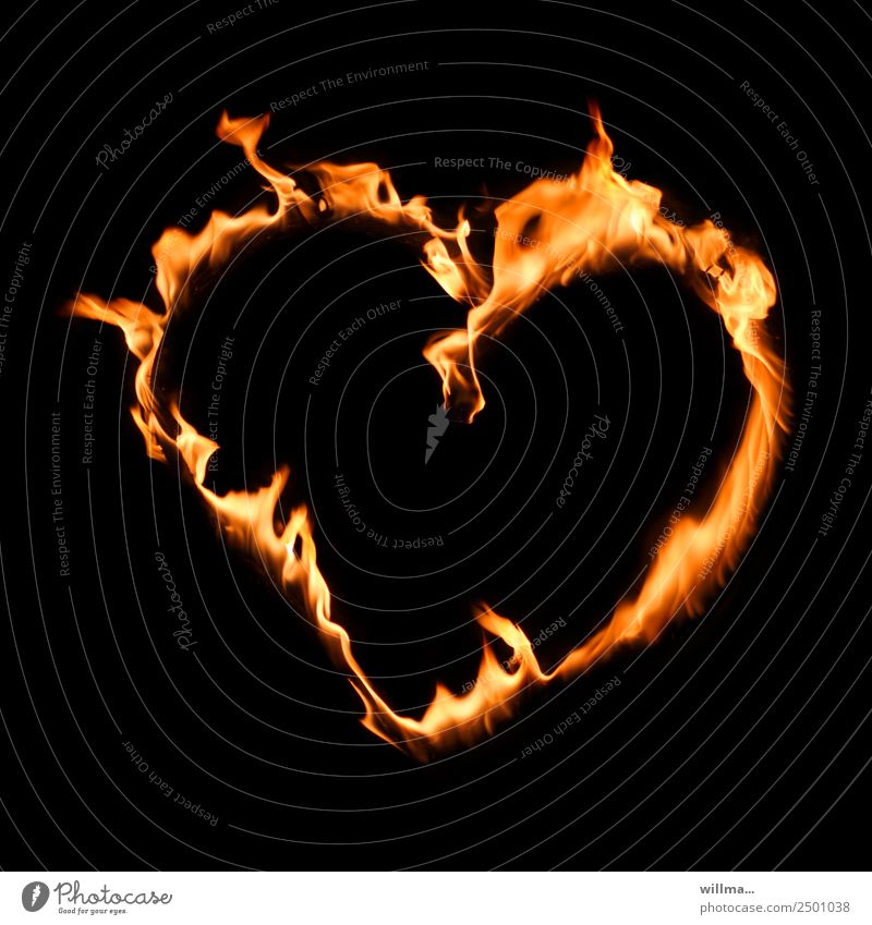 heart instead of rush Valentine's Day Mother's Day Fire Heart Loyalty Love Burn Copy Space Humanity Slogan Colour photo Experimental Neutral Background Night