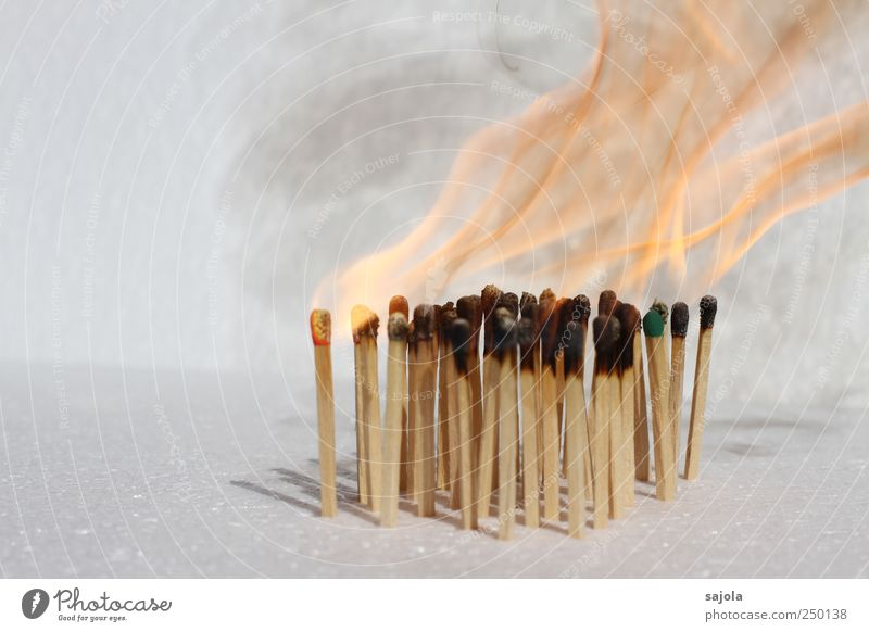 burn out Fire Wood Hot Flame Match Burn Ignite Smoke Colour photo Deserted Copy Space left Isolated Image Neutral Background Shallow depth of field Many
