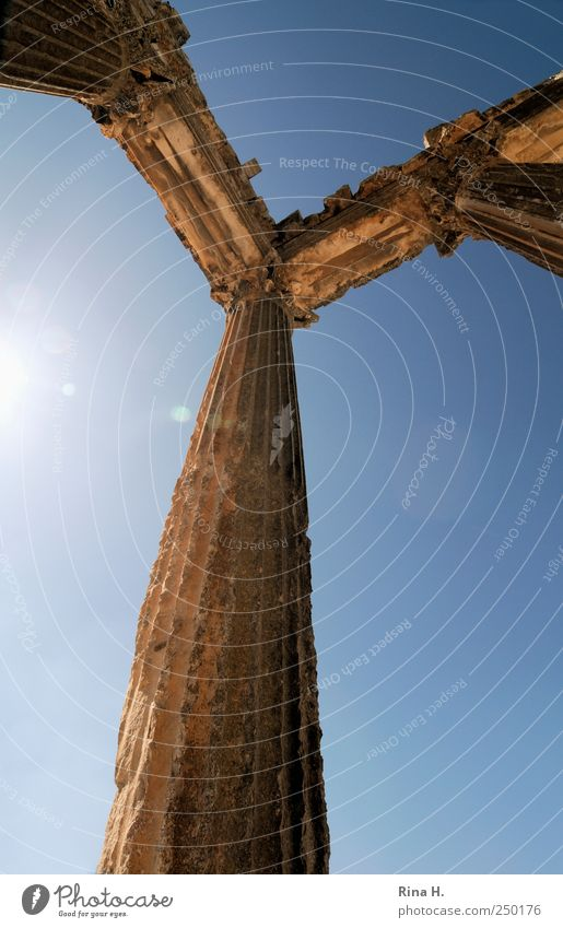 Nothing is for eternity Vacation & Travel Tourism Trip Sightseeing Dougga Tunisia Architecture Column Tourist Attraction Illuminate Authentic Gigantic Historic