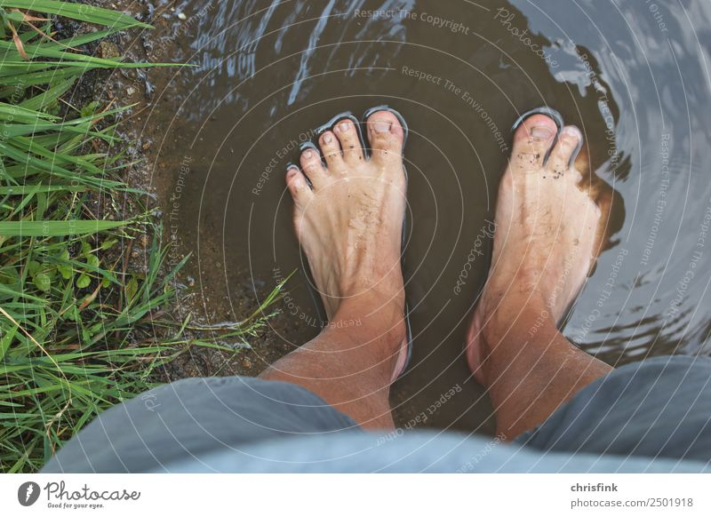 Feet in a dirty puddle Body Hiking Human being Masculine Legs 1 18 - 30 years Youth (Young adults) Adults 30 - 45 years 45 - 60 years Environment Nature Field