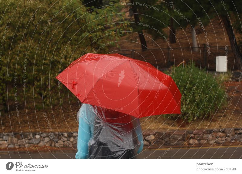 Woman protects herself from rain with a red umbrella. Tourist. Human being Masculine Back 1 Clothing Protective clothing Umbrella Freeze Rain Rain jacket Red