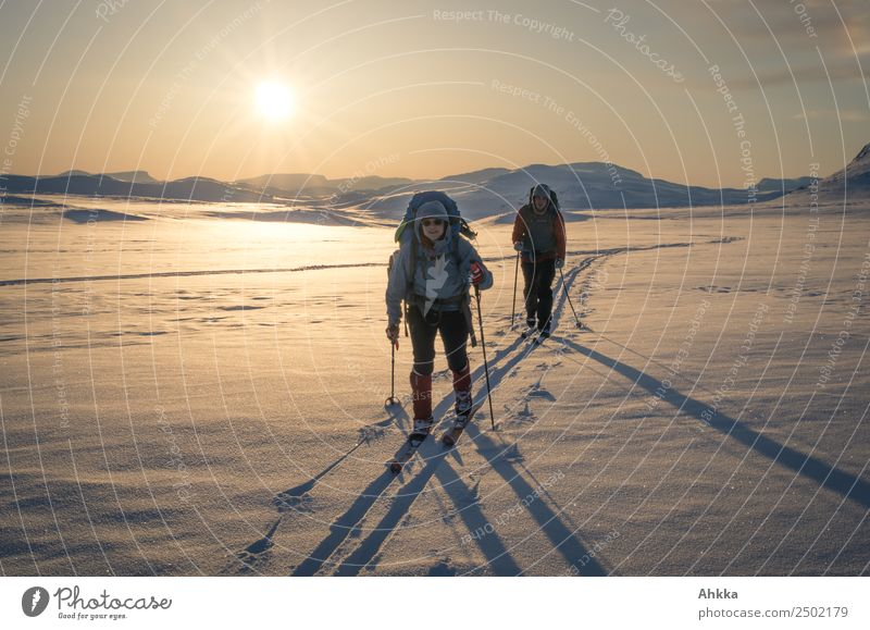 Warm winter landscape in the sunset with skiers Vacation & Travel Adventure Far-off places Winter vacation Skiing 2 Human being Horizon Sun Ice Frost Snow