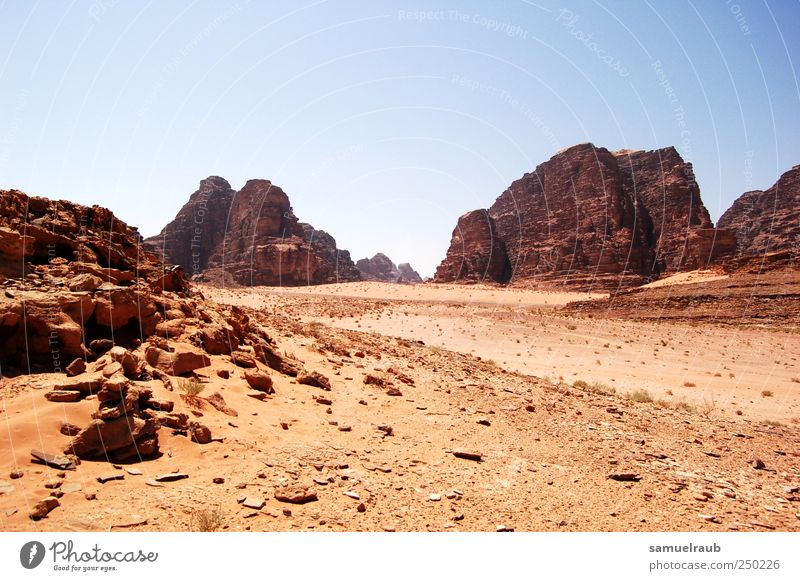 Desert Land Adventure Far-off places Freedom Landscape Earth Drought Poverty Gloomy Dry Brown Red Colour photo Exterior shot Copy Space top Day Light Shadow