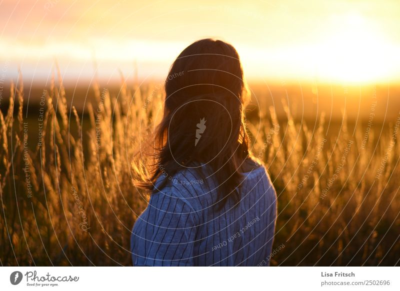sunset, back view woman, field Vacation & Travel Tourism Summer Summer vacation Young woman Youth (Young adults) 1 Human being 18 - 30 years Adults Environment